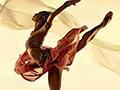 Балет: «Les Fleurs de Ballet»